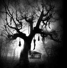 #dark