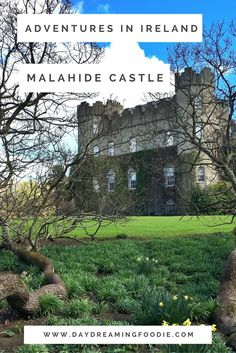 Ireland has a rich supply of castles & Malahide Castle is the perfect one to visit if you are visiting Dublin. Only a short trip out of the city ( by car or train ) you can find this serene and beautiful spot!