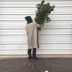 We have Holly and lots of it! House Plants, Beautiful Homes, Normcore, Photo And Video, Instagram, Style, Fashion, House Of Beauty, Swag