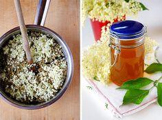 Sciroppo di fiori di sambuco - GranoSalis - Blog di cucina naturale e consapevole