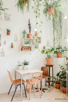 Home decor and design inspirations in Pantone 2017 interiors in Greenery Pantone color of the year Home Interior, Interior And Exterior, Interior Decorating, Interior Design, Interior Boutique, Plant Design, Natural Living, Plant Decor, Indoor Plants