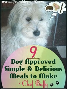 Check out 9 Dog Approved Simple and Delicious Meals to Make - Chef Buffy at Life and Dog Stuff blog. #humor #dogs #dogstuff