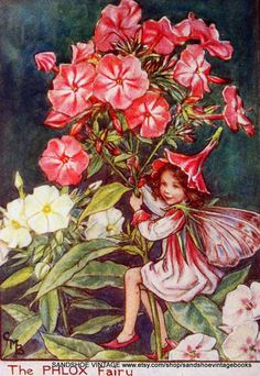 All Cicely Mary Barker Fairies | ON HOLD 1930s FAIRY Cicely Mary Barker Print Ideal for Framing