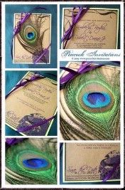 Wedding Invitation - Peacock Decor and Invites - QUEENSGIRLBRIDE's Purple Wedding by Color Blog