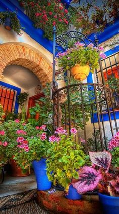 Colorful courtyard in Cordoba, Spain • photo: Kark Melo on Flickr