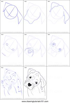 Boxer dogs are medium to large size animals. They have short hairs. They were breaded in Germany. Boxer dogs are The post Boxer dogs are medium to large size animals. They have short hairs. They were br& appeared first on Elwood Kennels. Puppy Drawing Easy, Dog Drawing Tutorial, Dog Sketch Easy, White Boxer Puppies, Boxer Dogs, Boxer Dog Tattoo, Zentangle, Drawing Sheet, Easy Animals