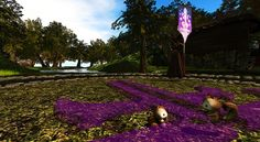 Critter Adventures - Chippies in Tangleshimmer Grove (with Searlait) Secret Places, Lush Green, In The Heart, Adventure, Flowers, Adventure Movies, Adventure Books, Royal Icing Flowers, Flower
