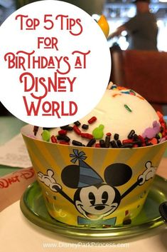 Our Top 5 Tips for Celebrating Your Birthday at Walt Disney World Our Top 5 Tips for Celebrating Your Birthday at Walt Disney World - Disney Park Princess Voyage Disney World, Disney World Secrets, Disney World Christmas, Walt Disney World Vacations, Disney World Tips And Tricks, Disney World Trip, Disney Tips, Disney Magic, Disney Worlds