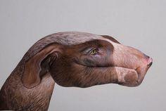 Handimals: pinturas impressionantes de animais