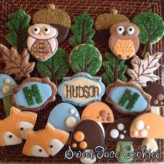 Fun Woodland Cookies