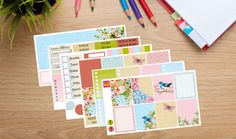 Fill your planer with gorgeous florals and birds with this weekly kit designed for the Erin Condren Vertical planner. In the BASIC KIT you will receive (4 sheets total): 8 full boxes 8 star checklists To Do headers Today headers Bits & Bobs headers Additional headers Weekend banner Washi strips 4 half boxes 7 dinner little things 5 generic little things Weekly tracker (sidebar) Routine tracker (sidebar) 2 exclamations  In the BASIC KIT + WASHI you will get everything listed above plus (5…