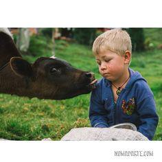 Nomadarte VANLIFE🚙|TRAVEL COUPLE👩❤️💋👨Cyn y Gus| 6 años viajando Travel Couple, Van Life, Couples, World, Animals, Instagram, Colombia, Scenery, Animales