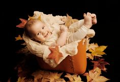 baby in bag- baby in autumn leaves -RJN Photography