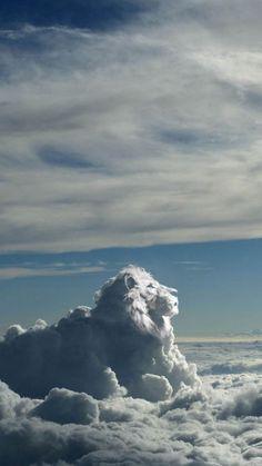 Lion of clouds in the sky. Lion of Judah. Cool Pictures, Cool Photos, Beautiful Pictures, Beautiful World, Beautiful Places, King Of The World, Lion Of Judah, Lion King Art, Lion Art