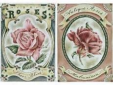 victorian roses - Yahoo Image Search Results
