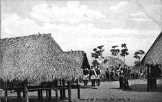 Home of the Seminoles - Pine Island, Florida