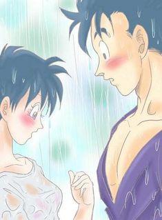 Gohan & Videl - Dragon Ball Love Fan Art (23371994) - Fanpop