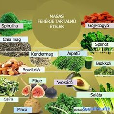 high protein foods, the truths about high protein food and what you must understand for healthy living High Protein Foods List, Good Sources Of Protein, Ideal Protein, High Protein Recipes, Raw Food Recipes, Passover Recipes, What Is Spirulina, Soy Protein Isolate, Diet