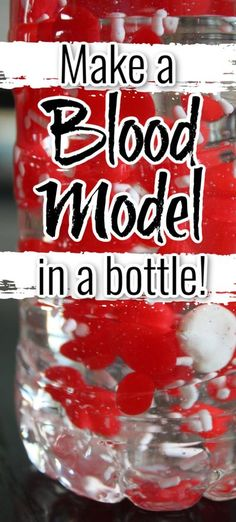 Kids will love learning about the components of blood with this fun and memorable activity -  make a blood model! #scienceathome #scienceforkids Kinesthetic Learning, Early Learning Activities, Science Activities For Kids, Preschool Science, Science Ideas, Human Body Crafts For Kids, Heart Facts, Biology Experiments, Blood Components