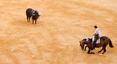 Валенсия, конная коррида