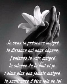 Cute Quotes, Best Quotes, Funny Quotes, Because I Love You, Love You So Much, Loved One In Heaven, Tu Me Manques, Quote Citation, Strong Words