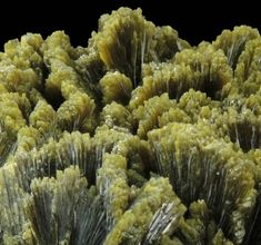 Epidote, Cantera de los Serranos, Alicante, Valenciana, Spain. Lustrous transparent-to-translucent green bladed epidote crystals standing upright in flattened aggregates of sub-parallel crystals. Overall Size: 3.5x2.5x1.5 cm Crystals: 6-10 mm