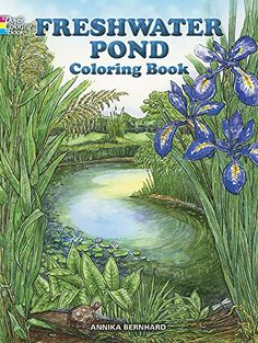 Freshwater Pond Coloring Book (Dover Nature Coloring Book) by Annika Bernhard http://www.amazon.com/dp/0486410358/ref=cm_sw_r_pi_dp_.3.Uub1JT2C13