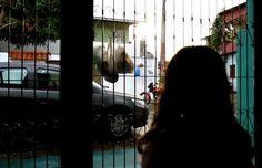 Caso ocorreu em uma escola no município de Presidente ,Figueiredo, distante a 106 quilômetros de Manaus ,Professor é suspeito de estuprar menina de nove anos dentro de escola no interior do Amazonas