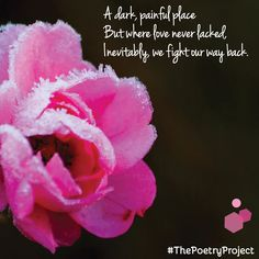 """""""Worth The Fight"""" — poem from The Poetry Project. #ThePoetryProject"""