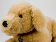 Heavenly Pals are high-end stuffed animals that are urns for your pet after it passes Pet Urns, Metal Containers, Stuffed Animals, Heavenly, Your Pet, Plush, Teddy Bear, Dogs, Pet Dogs
