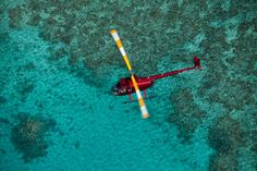 Palm Cove Air & Helicopter Tours