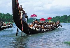 Kerala is very popular for its backwater destination and is mostly preferred by the honeymooners
