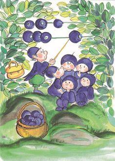 I luokan mustikat (Class 1 blueberries)
