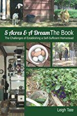 10 Gardening Tips and Tricks That Everyone Should Knowbehancebloglovindribbbleemailfacebookflickrgithubgplusinstagramlinkedinmediumperiscopephonepinterestrsssnapchatstumbleupontumblrtwittervimeoxingyoutube