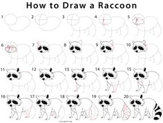 How to Draw a Raccoon (Step by Step Pictures) Art Drawings For Kids, Cartoon Drawings, Animal Drawings, Cute Drawings, Drawing Skills, Drawing Sketches, Raccoon Drawing, Bridge Drawing, Clown Paintings