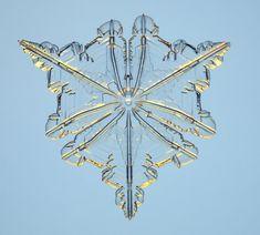 Google Image Result for http://www.its.caltech.edu/~atomic/snowcrystals/unusual/DSC_0062b.jpg