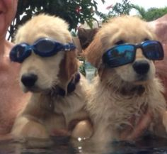 Two cool dudes