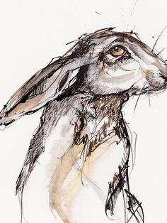 Ink In Water, Animal Art, Ink Art, Rabbit Drawing, Ink Pen Drawings, Watercolor And Ink, Bunny Art, Ink Sketch, Ink Illustrations
