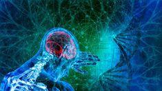 """133-RO G., Implant de ultima generatie. Alimente """"bio"""". Legea lui Unu - ... Sci Fi, Pets, Animals, Science Fiction, Animales, Animaux, Animal, Animais, Animals And Pets"""