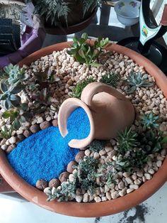 Ana Cristina Succulent Gardening, Garden Terrarium, Succulent Terrarium, Succulent Arrangements, Planting Succulents, Container Plants, Container Gardening, Dish Garden, Miniature Fairy Gardens