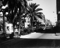 Florida Memory - Ybor City street scene - Tampa, Florida. The best Cubans and  Devil crabs at Silver Ring.