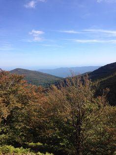 Les Agudes. Parc Natural del Montseny. Catalonia