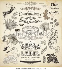 Old Style Coffee Frames And Labels   Retro Floral Ornaments   Vintage Ribbons, Borders And Other Elements Collection For Coffee Design   Eps10 Vector Set - 100616110 : Shutterstock