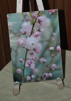 Beautiful Sea Foam Green and Pink Botanical Framed Print by Tjo @ makedomercantilearts, $18.00