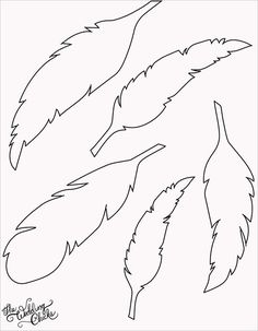 plumes: