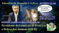 Morada dos Guerreiros Escolhidos: ENTREVISTA DR REYNALDO S VELLOSO PROTEÇÃO E DEFESA...