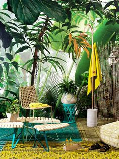 Love this giant wallpaper. Indoor oasis.