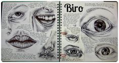 Biro Facial Features