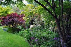 Glenfalloch garden - Ian Watt plant and garden photography. Plants and Botanical Gardens from around the world. Photos of the world's finest gardens.