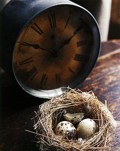 speckled eggs and tarnished clock...